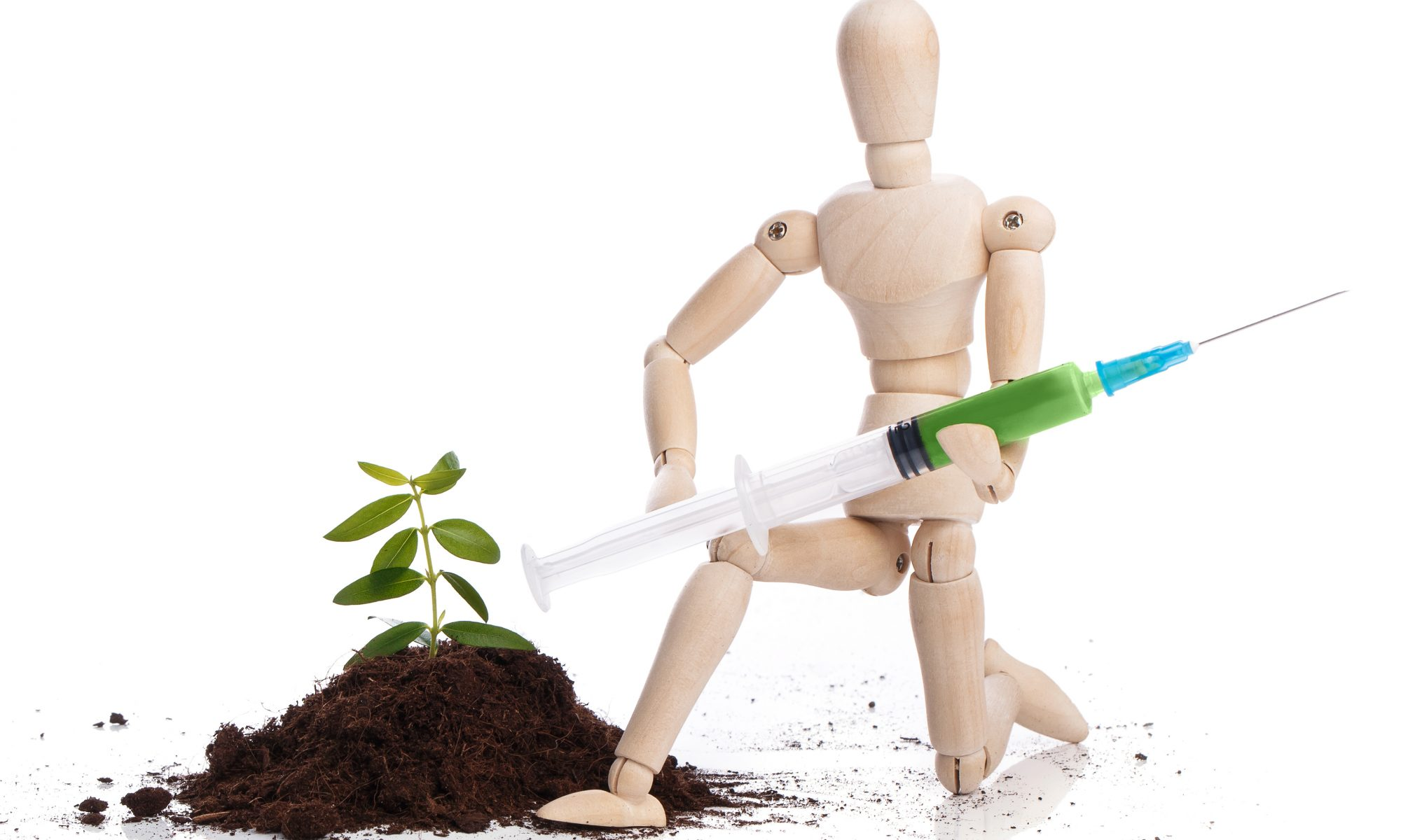 tree treatment using injection